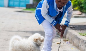 How Pets Positively Affect Family Life